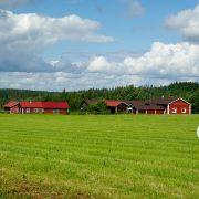 finland-905701_640